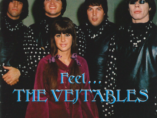 1965~1966 Vejtables - Feel ... The Vejtables